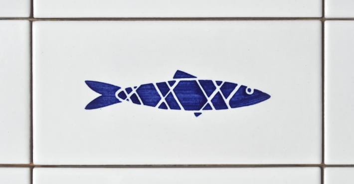 sardine2016_02_studiocharlie_w