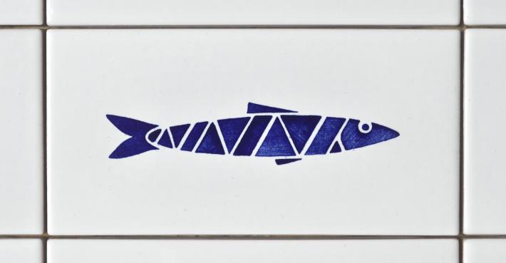 sardine2016_05_studiocharlie_w